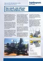 Solution: DF Multiphase pump EN